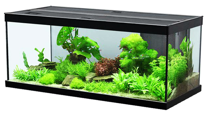 aquatlantis style led 100 aquarium schwarz. Black Bedroom Furniture Sets. Home Design Ideas