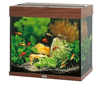 juwel aquarium lido 120 dunkelbraun. Black Bedroom Furniture Sets. Home Design Ideas
