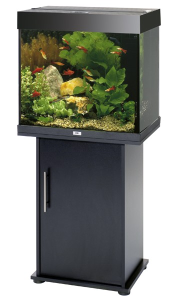 juwel aquarium lido 120 kombi komplett buche 120 liter. Black Bedroom Furniture Sets. Home Design Ideas