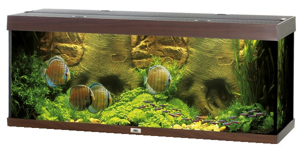 juwel aquarium rio 400 l incl filter heizer licht ebay. Black Bedroom Furniture Sets. Home Design Ideas