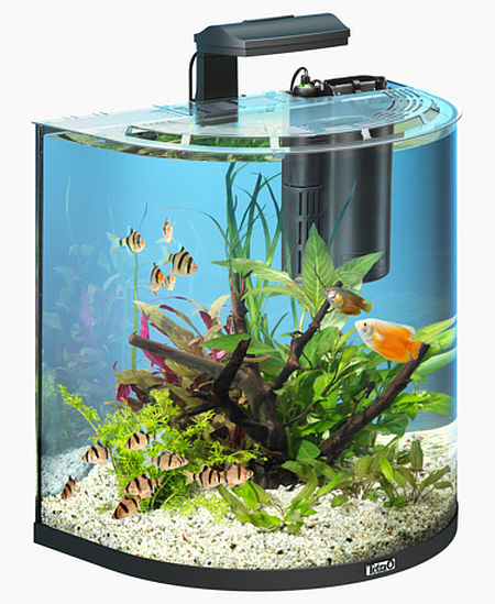 tetra aquaart explorer line aquarium set 60 l. Black Bedroom Furniture Sets. Home Design Ideas