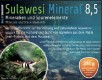 SaltyShrimp Sulawesi Mineral 8,5 Mineralsalz 100 g