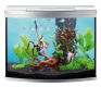 Tetra AquaArt® Evolution Line Aquarium-Set 130 l